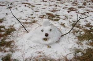 Melting_Snowman_12-16-05